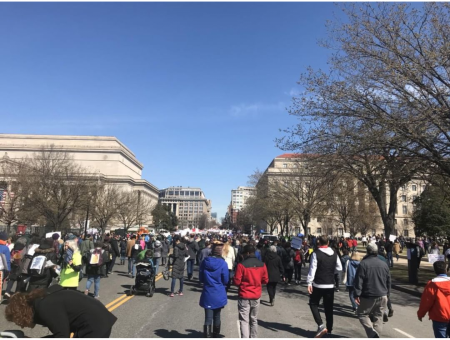 A+peaceful+rally+forming+in+Washington%2C+D.C.+for+gun+control.%0APhoto+Credit%3A+India+Garrison