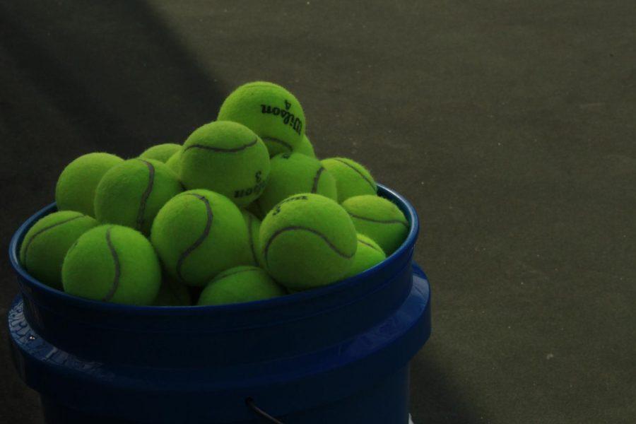 Men's Tennis: Wildcats defeat Trojans