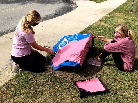 SGA Rock Painting
